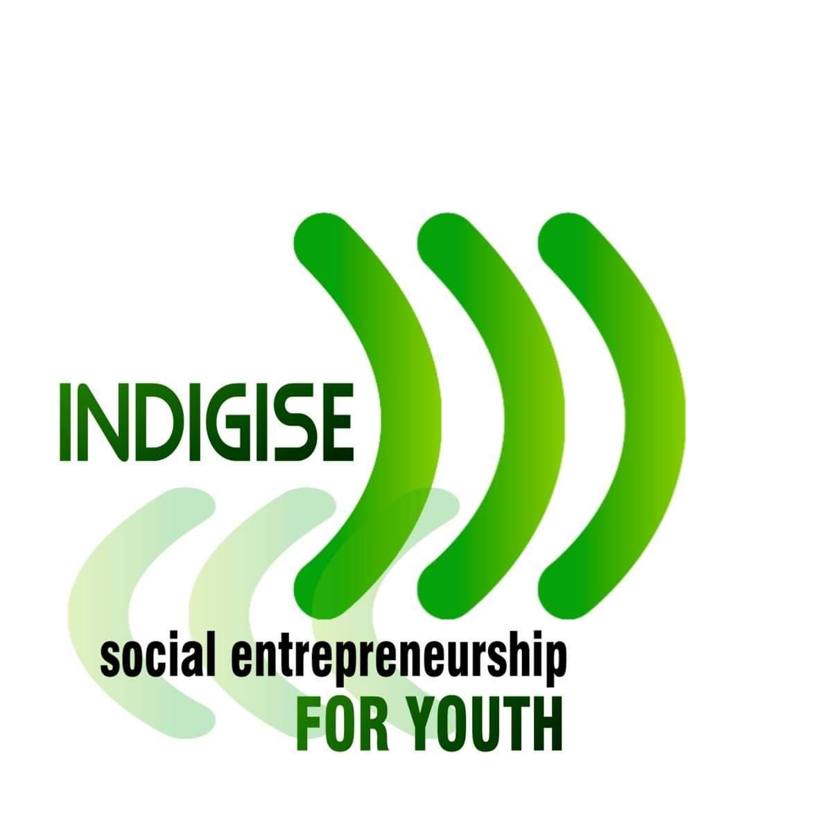 Nasz projekt o młodzieżowej przedsiębiorczości społecznej InDiGiSE